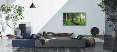 Imagen de una sala de estar que muestra el concepto de accesorio decorativo